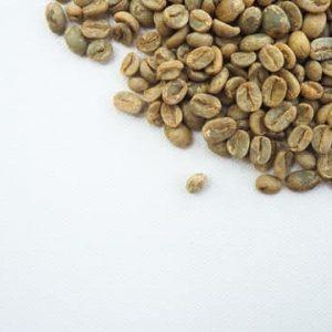 CAFÈ VERD¿Què hi ha darrere?