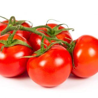 Tomates de rama